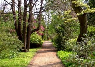 Arborétumok napja